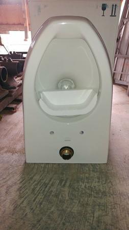 Kohler 1.6 Gallon wall hung Toilet